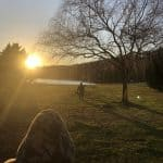 sun setting over lake with child playing in grass