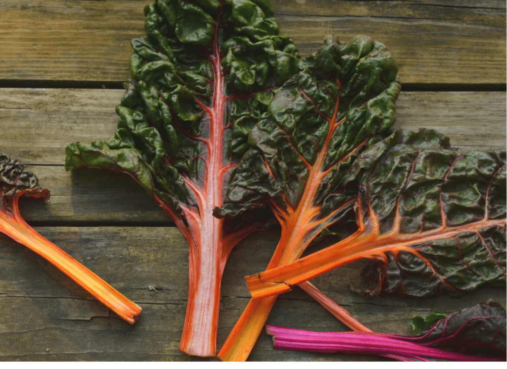 rainbow swiss chard laid out on table